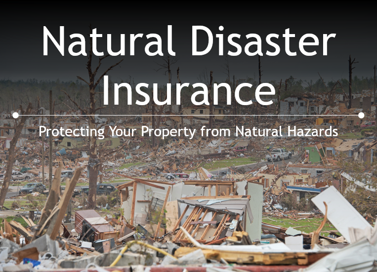 Natural Disaster Insurance – Protection from Natural Disasters | HomeID®